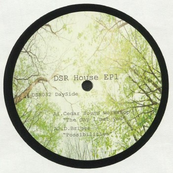 Various - DSR House EP1 - Dailysession Records
