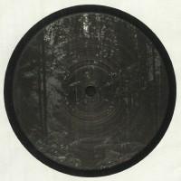 Francois Dillinger - Icosahedrone - Diffuse Reality