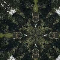 Aleksi Perala - Sunshine 1 (MINI LP)  - Dub Recordings / Dub037