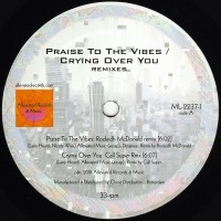 Mr Fingers - Praise to the vibes / Crying over you remixes - Alleviated / ML2237-1