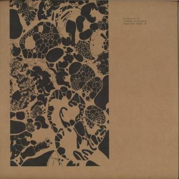 Ricardo Villalobos - Empirical House LP - ARPIAR 15
