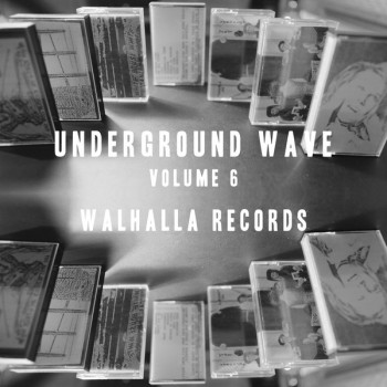 Various ‎– Underground Wave Volume 6 - Walhalla Records