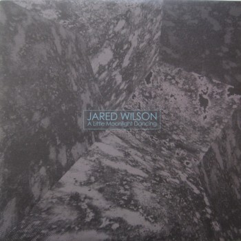 Jared Wilson – A Little Moonlight Dancing - Skudge Presents – SKUDGE-PT006