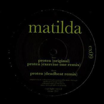 Matilda – Protea - Exone