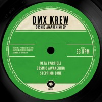 DMX Krew - Cosmic Awakening EP - SHIPWREC