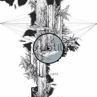 VincentIulian - Various Whispers - Subtil Records - SBTL018
