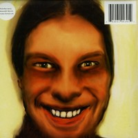 Aphex Twin ‎– I Care Because You Do - Warp Records