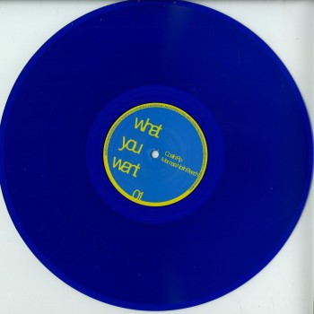 Costin RP - MAMAIA NORTH BEACH (VINYL ONLY) - What You Want / Wow00