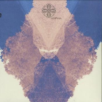Wareika – Break New Sol EP - Amphia – AMP012