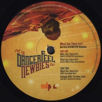 The Dangerfeel Newbies - What Am I Here For? KAI ALCE MIX -NDATL Muzik / NDATL01