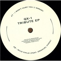 QX-1 (Mike Dunn) – Tribute EP (On A Journey/Love Injection) - PND10