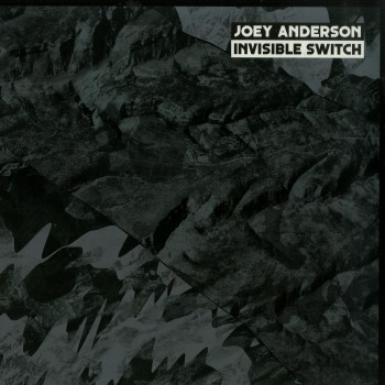 Joey Anderson - Invisible Switch - DEKMANTEL 029