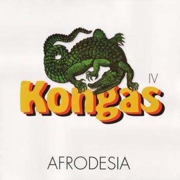 Kongas - Afrodesia - BEC5543885