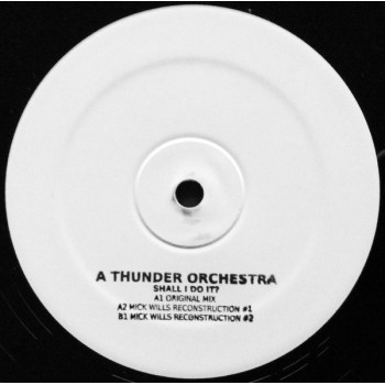 A Thunder Orchestra - Shall I Do It - Bio Rhythm – RHYTHMZ-DOT