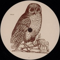 Unknown Artist  - Untitled - Owl - OWL003