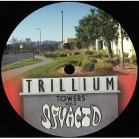 SFV Acid - Trillium Towers Vol.2 - SFV Records