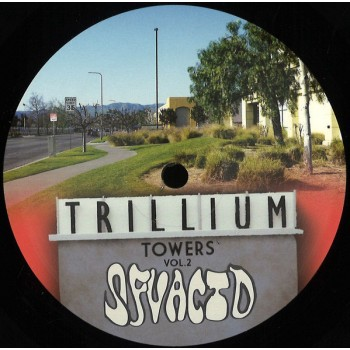 SFV Acid - Trillium Towers Vol.2 - SFV Records