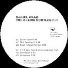 DANIEL WANG THE BOOTLEG EP RUSH HOUR RH108X