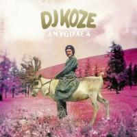 DJ Koze - Amydala LP - Pampa