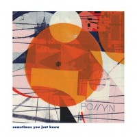 Pollyn - Sometimes You Just Know (Moodymann & DJ Harvey Remixes) - Music Group