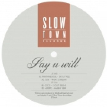 Various Artists - Say U Will feat S3A en Cecil - Stown006